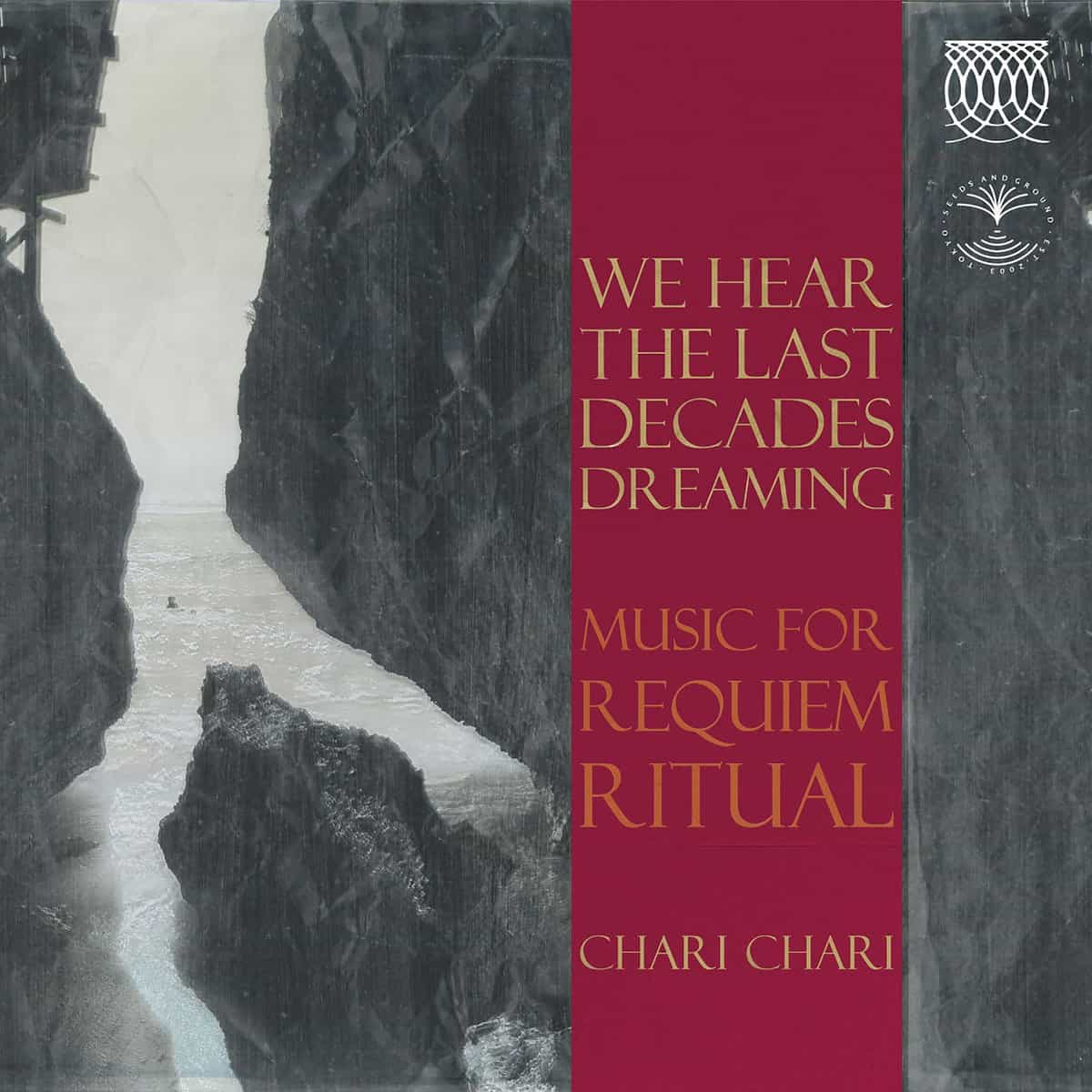 Artwrok de l'album We hear the last decades dreaming de Chari Chari